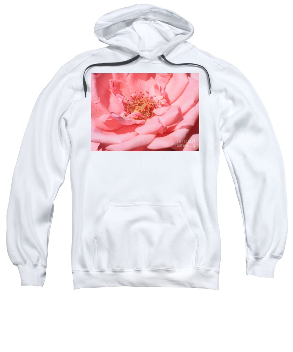 Roses Sweatshirt featuring the photograph Sweet Pink Rose by Carol Groenen