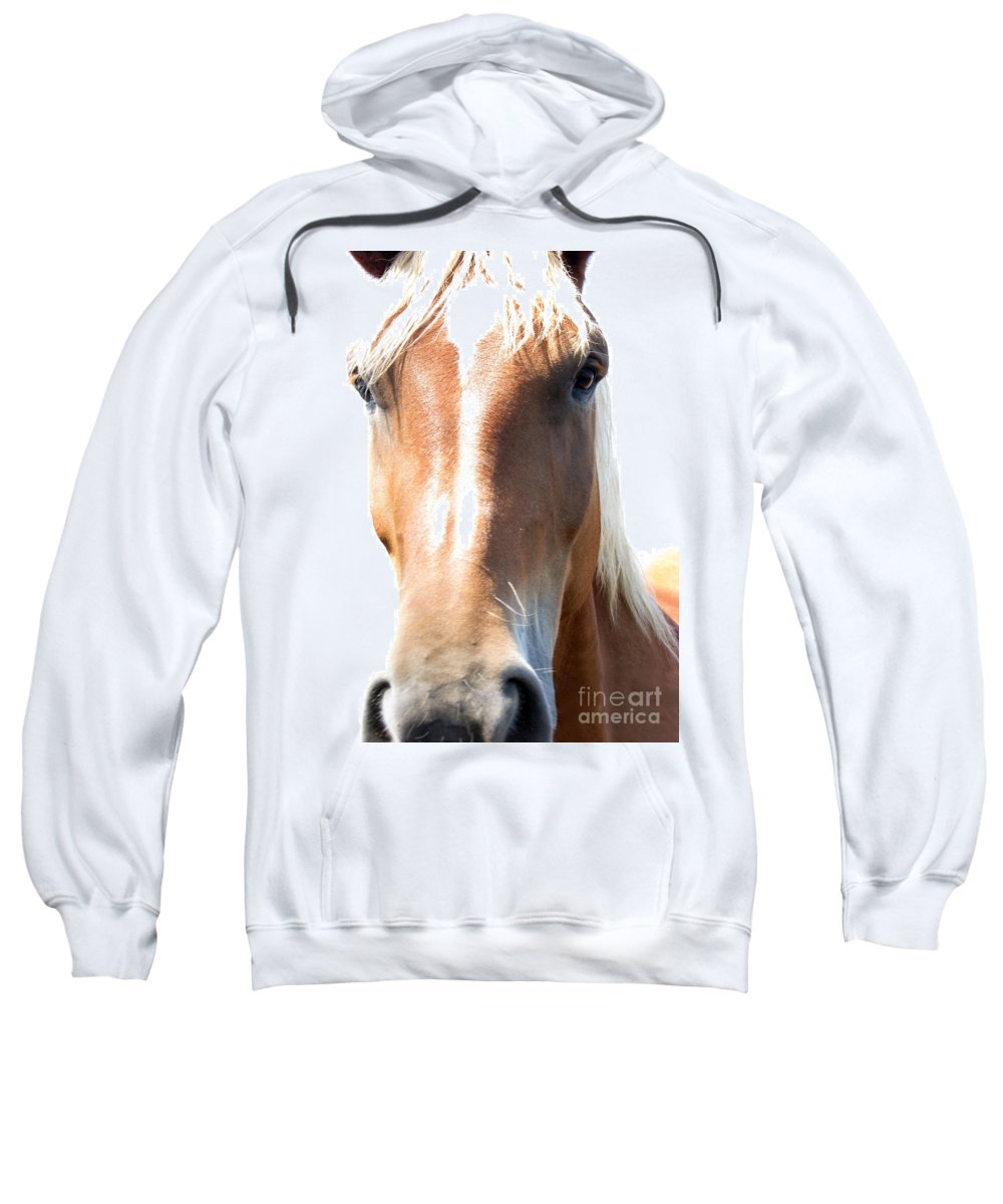 Horse Sweatshirt featuring the photograph Sweetie by Amanda Barcon