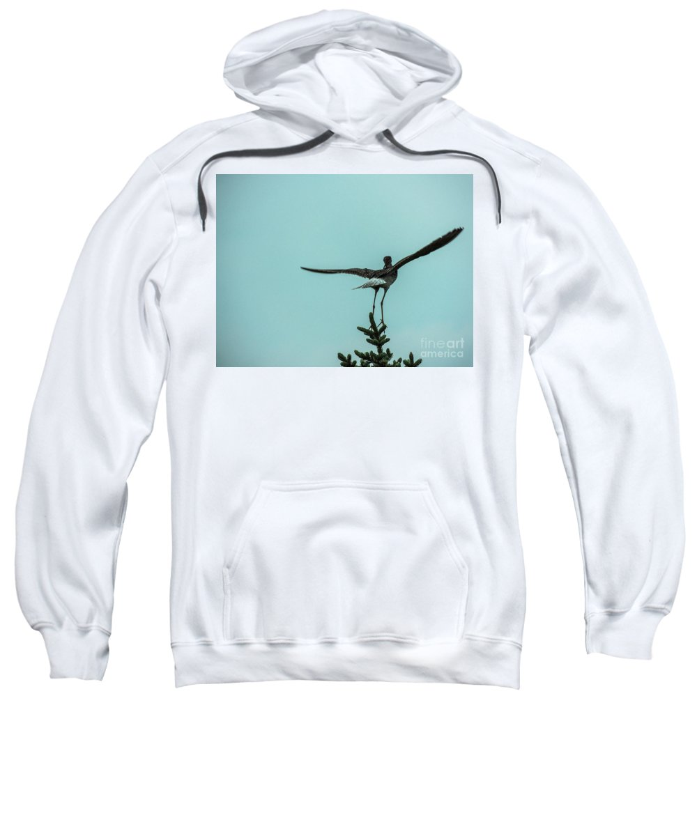 Bird Sweatshirt featuring the photograph Take Off by Grant Bolei