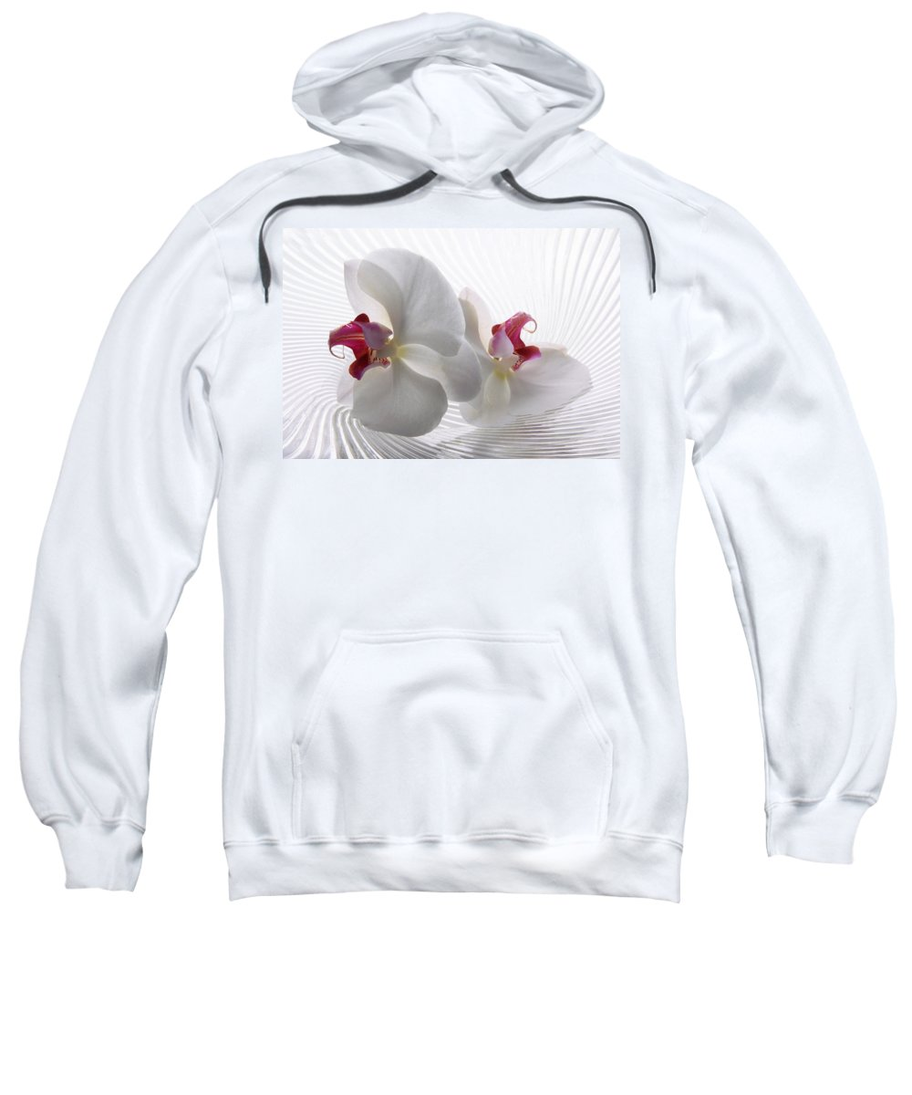 Orchid Sweatshirt featuring the photograph Tender Orchid by Manfred Lutzius