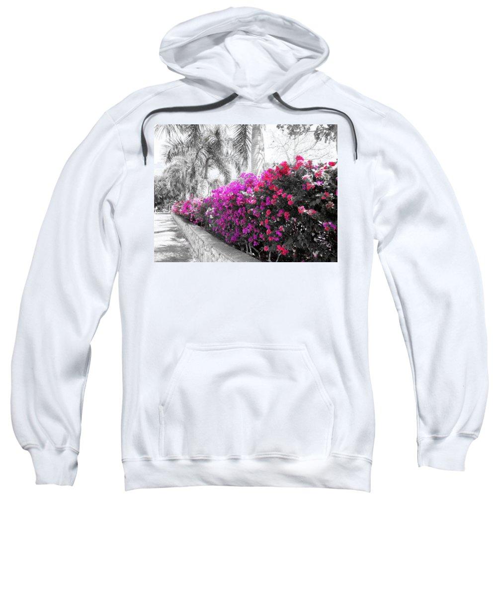Bougainvillea Sweatshirt featuring the photograph The Color Purple by Douglas Barnard