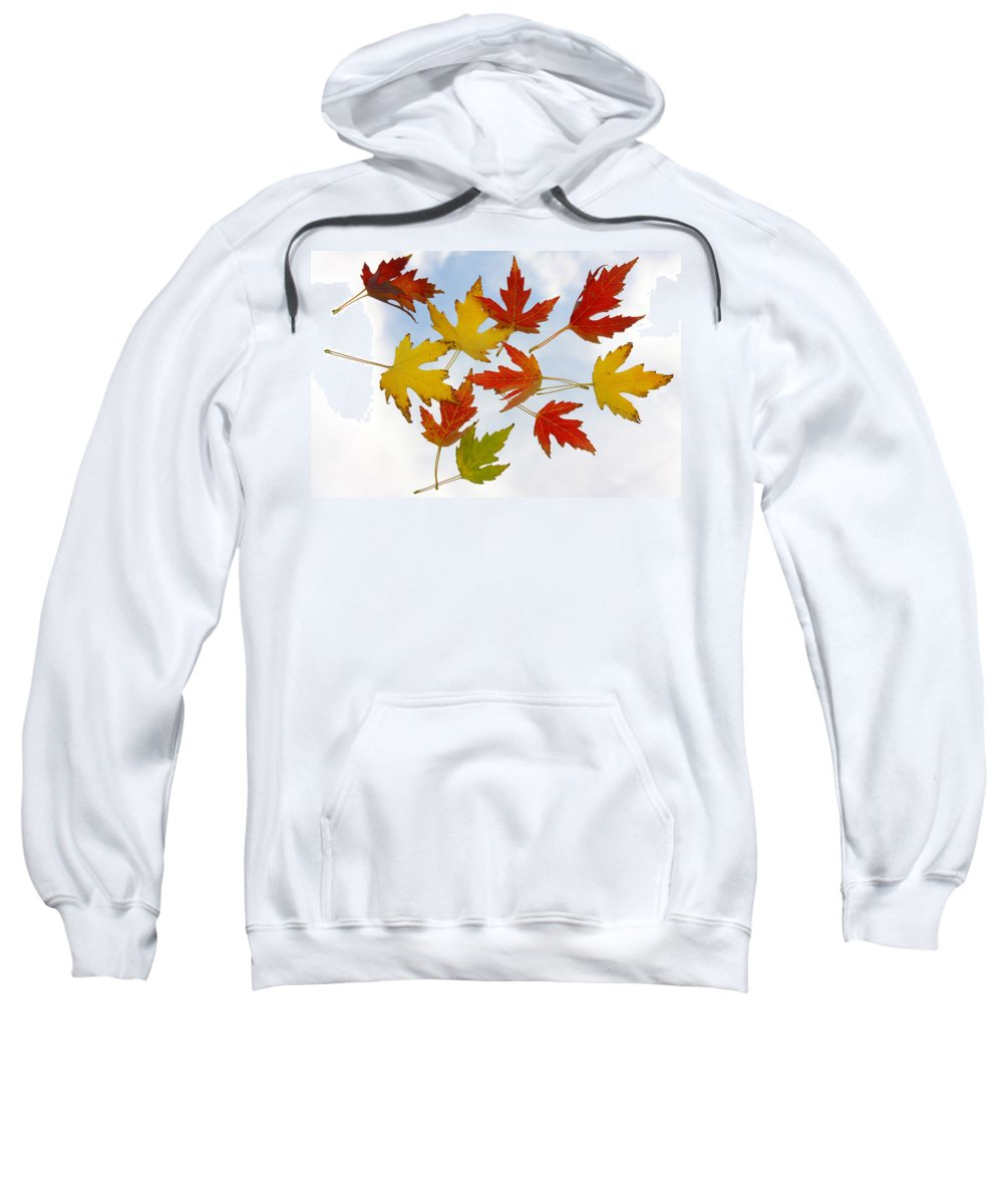 Sweatshirt featuring the photograph The Colors Of Fall by James BO Insogna