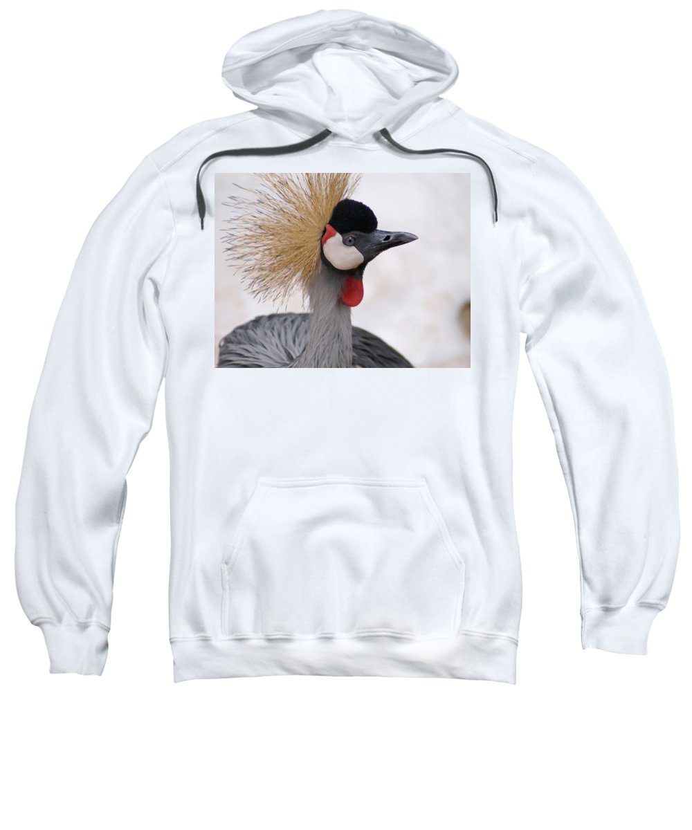 Crane Sweatshirt featuring the photograph The Headress Crowned Crane by Heather Coen