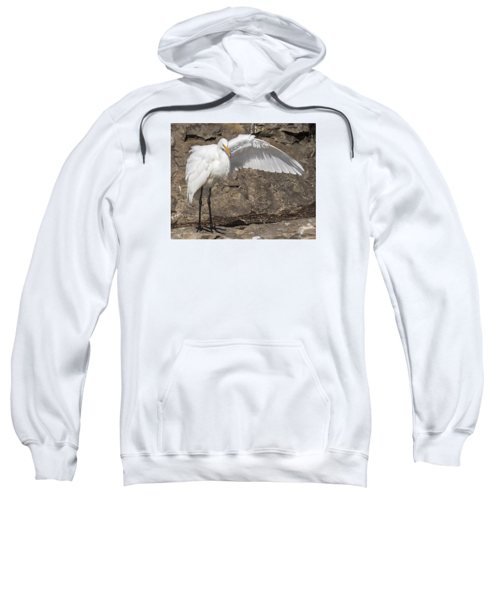 Birds Sweatshirt featuring the photograph The Magician by Bruce Frye