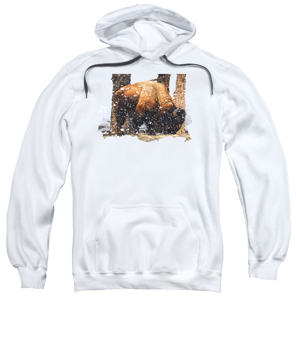 Yellowstone Sweatshirt featuring the photograph The Majestic Bison by Image Takers Photography LLC - Carol Haddon
