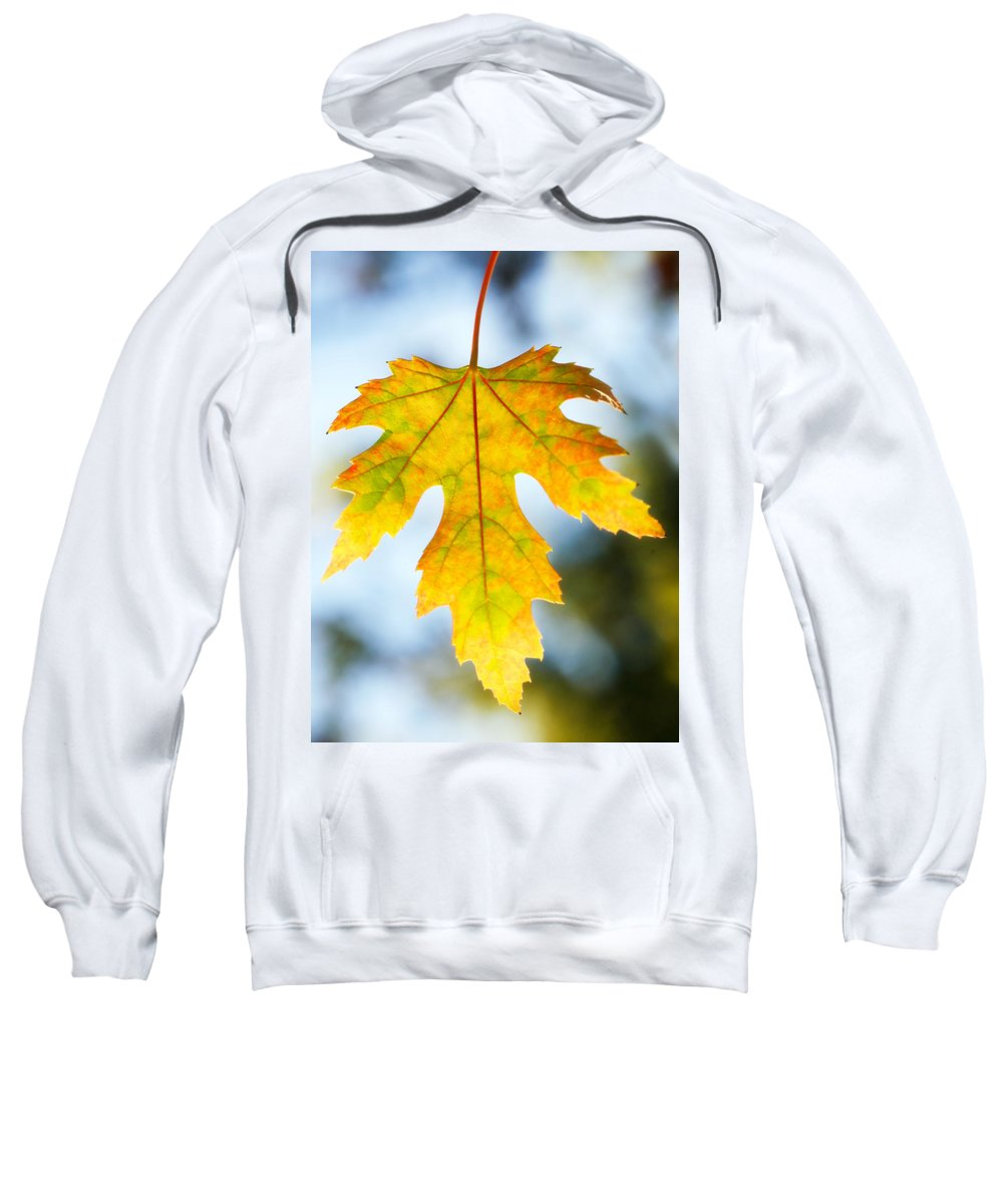 Maple Sweatshirt featuring the photograph The Maple Leaf by Marilyn Hunt