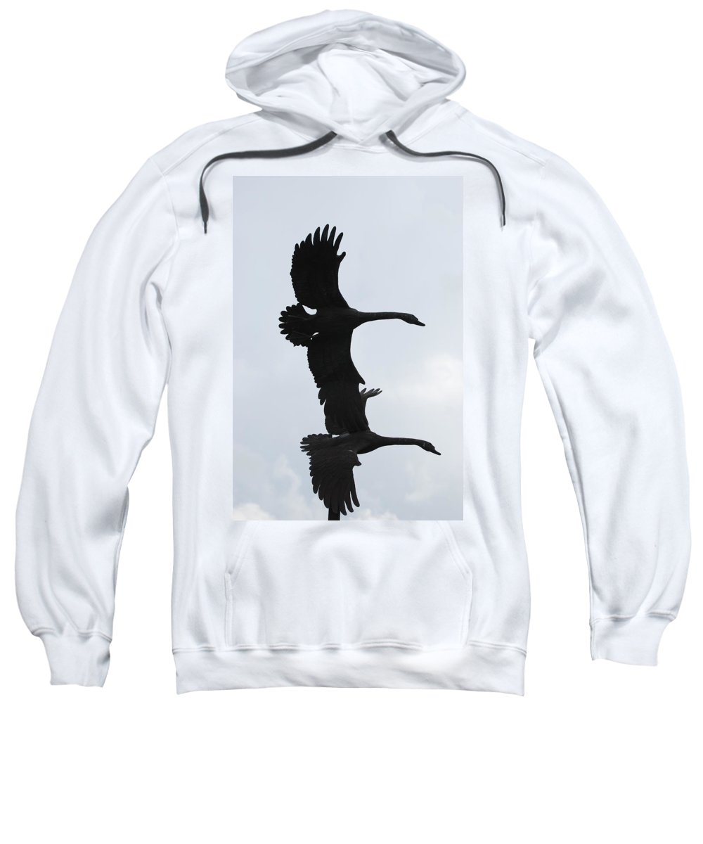 Sky Sweatshirt featuring the photograph The Stone Birds by Rob Hans