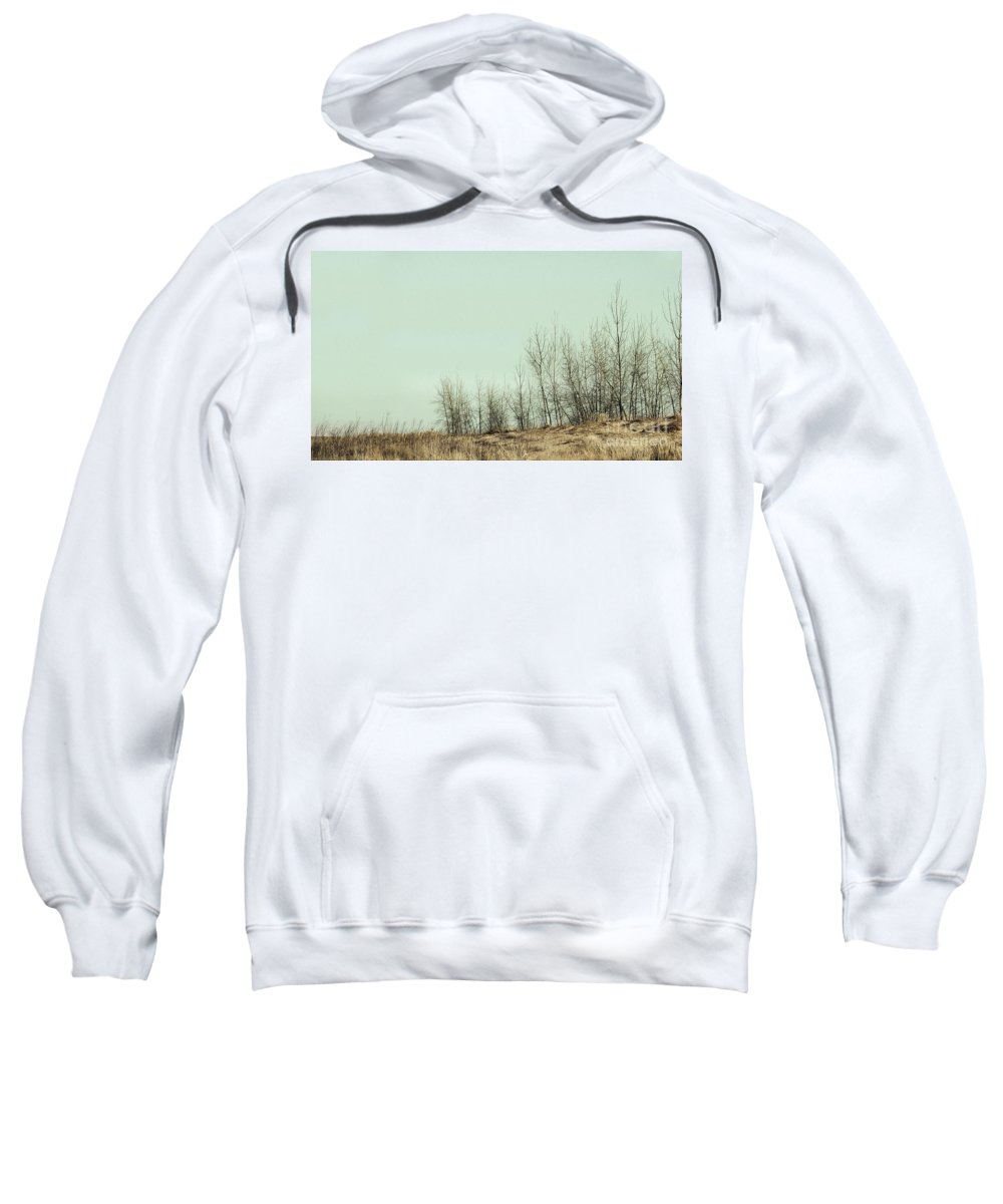 Trees Sweatshirt featuring the photograph The Things We Should Have Done To End Up Somewhere Else by Dana DiPasquale