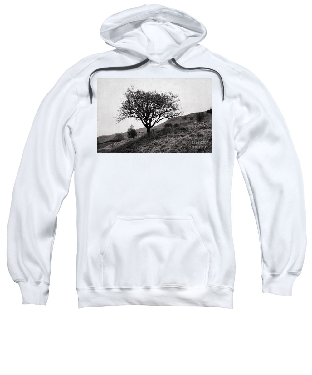 Tree Sweatshirt featuring the photograph The Tree On The Fell by Jacqueline Moore