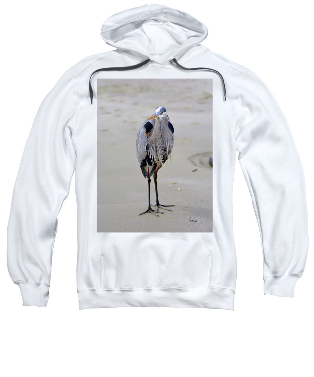 Sweatshirt featuring the painting The Watcher by Virginia Bond