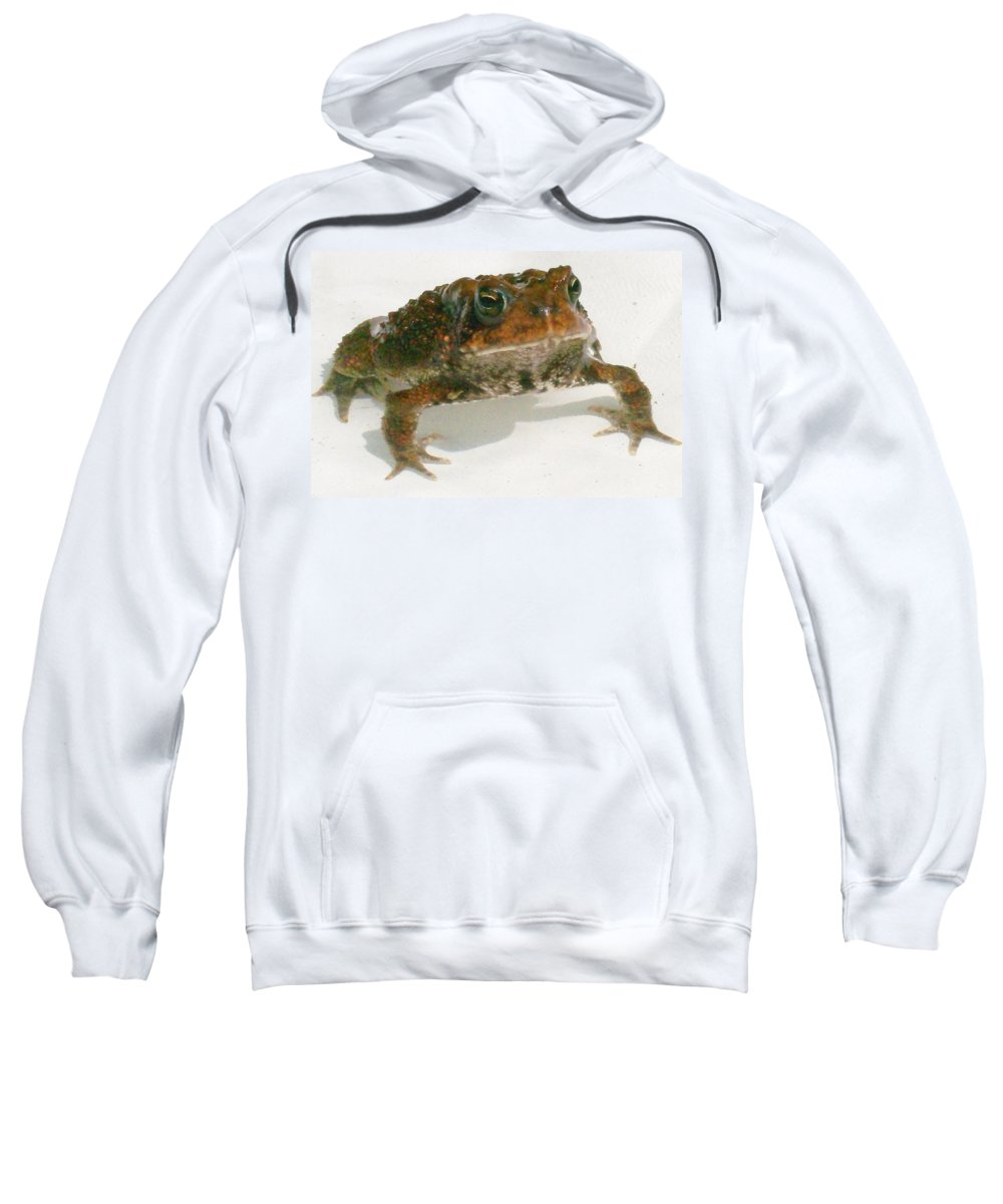 Photography Sweatshirt featuring the digital art The Whole Toad by Barbara S Nickerson