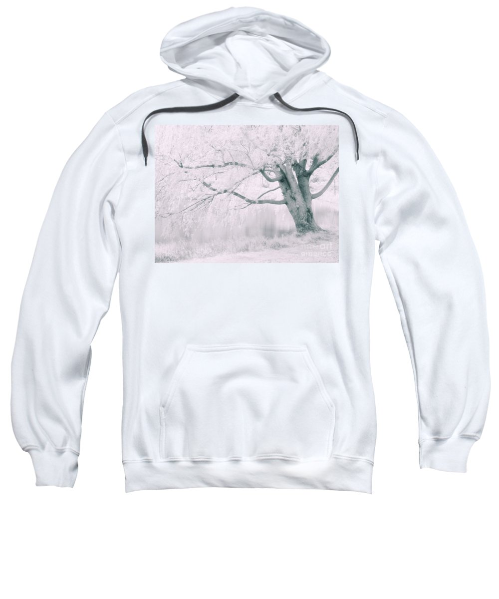 Tree Sweatshirt featuring the photograph There Was A Time.... by Tara Turner