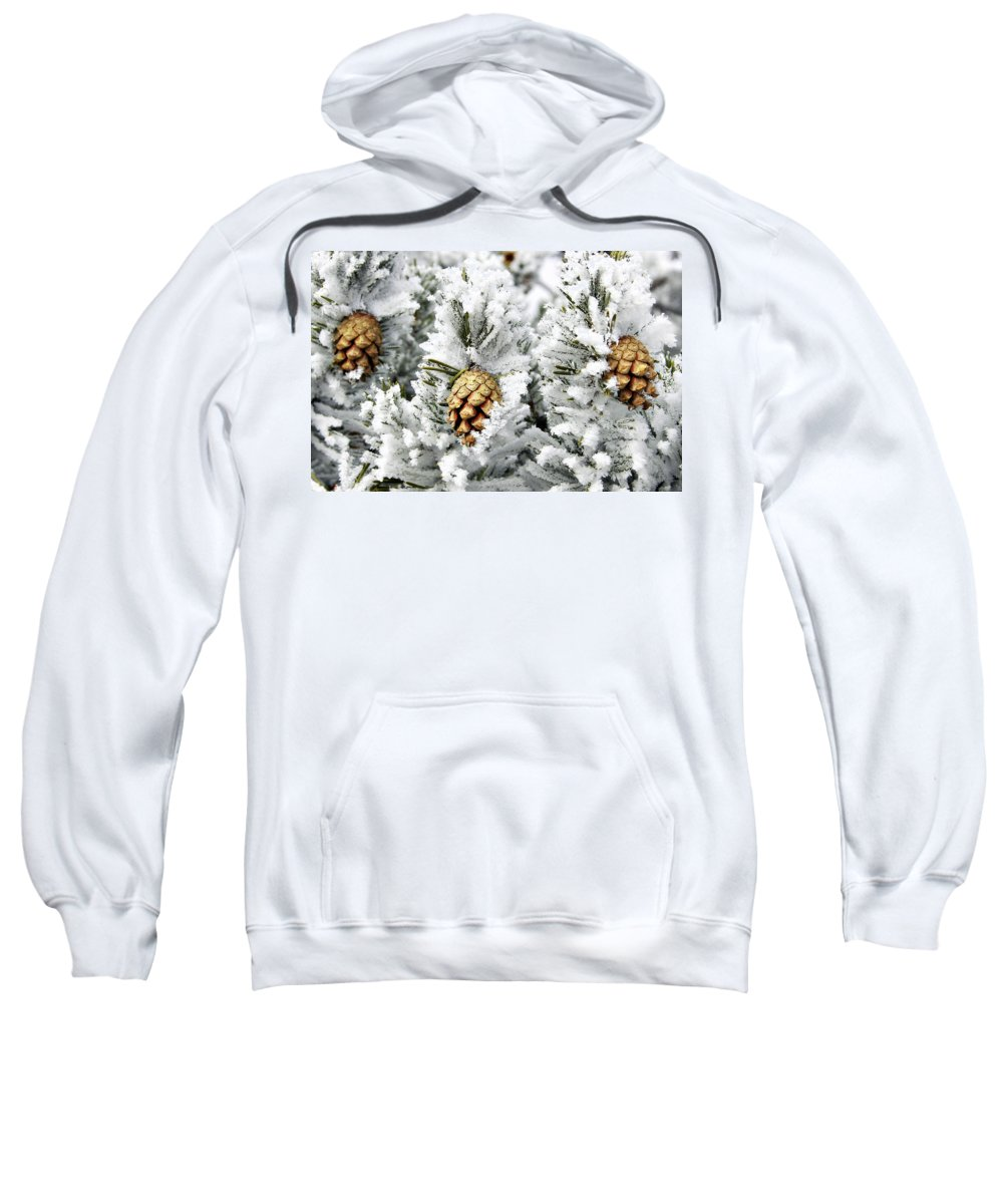 Frosty Sweatshirt featuring the photograph Three Pinecones by Marilyn Hunt