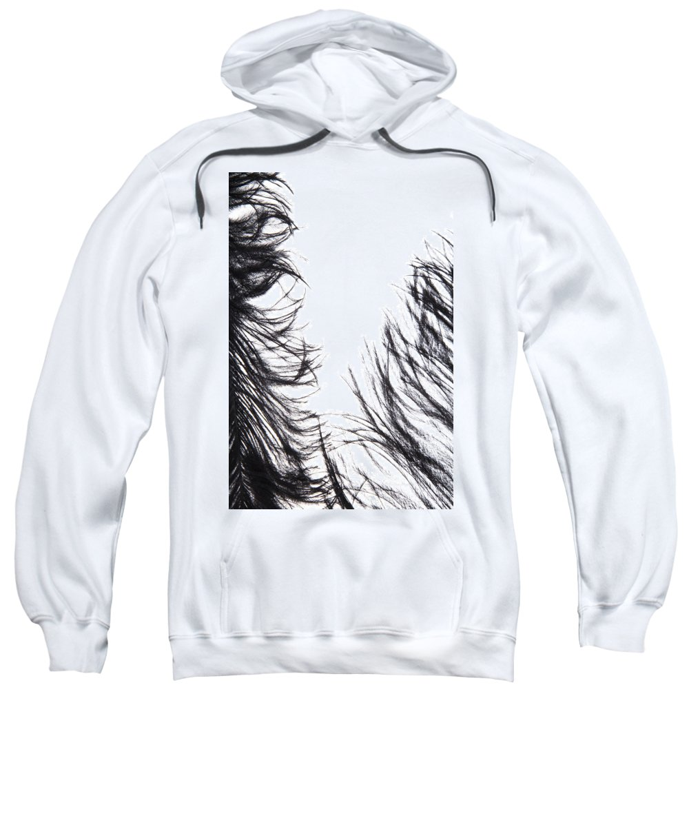 Feather Sweatshirt featuring the photograph Tickles II Image 1 by Monte Arnold