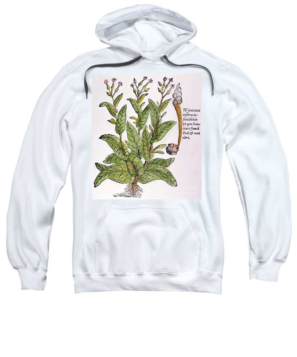 1576 Sweatshirt featuring the photograph Tobacco Plant by Granger
