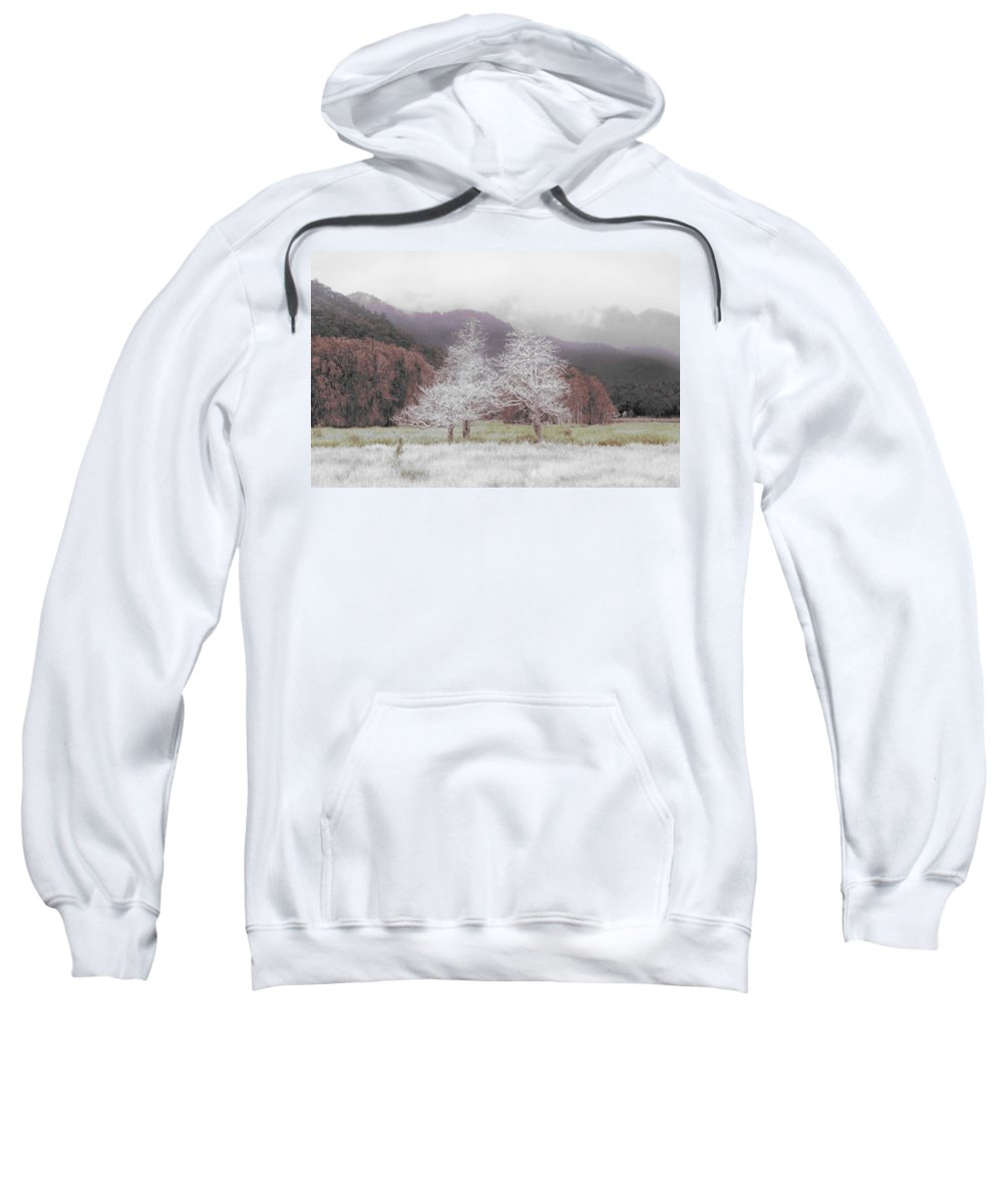 Landscape Sweatshirt featuring the photograph Together We Stand by Holly Kempe