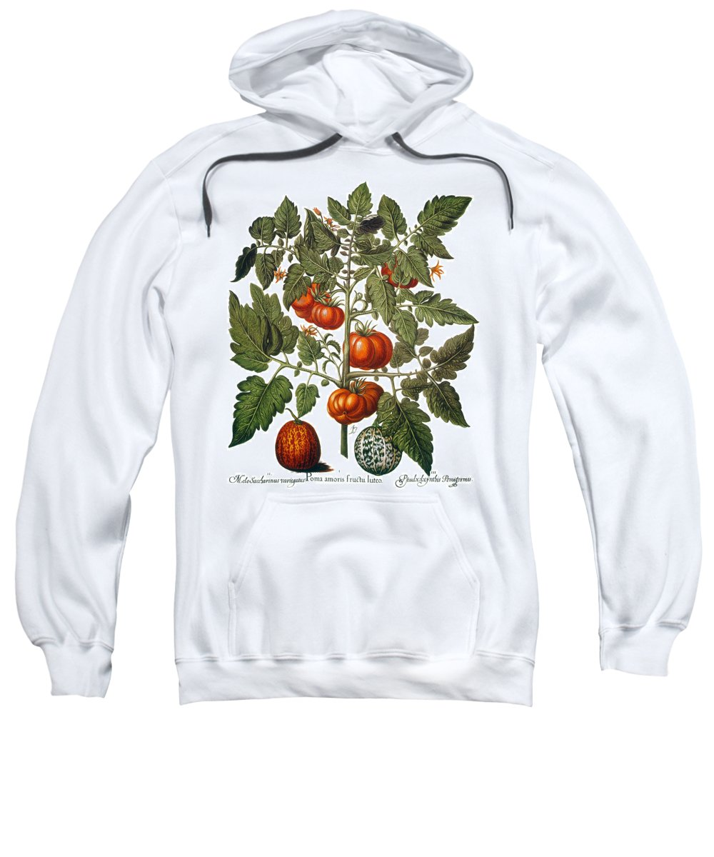 1613 Sweatshirt featuring the photograph Tomato & Watermelon 1613 by Granger