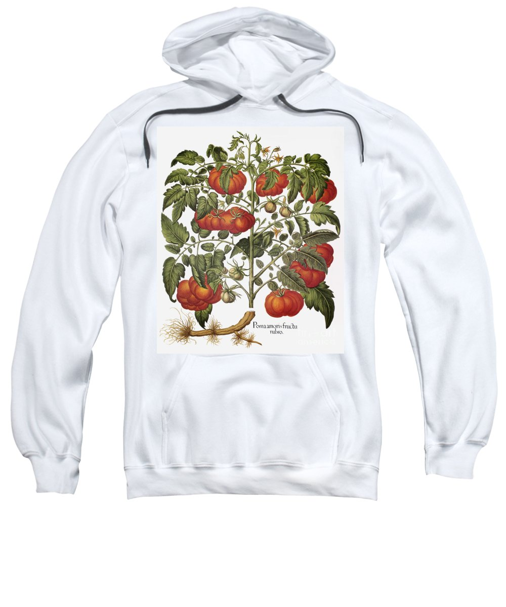 1613 Sweatshirt featuring the photograph Tomato, 1613 by Granger