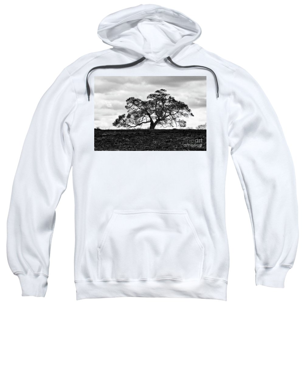 Oak Tree Sweatshirt featuring the photograph Tortue Oak by Scott Pellegrin