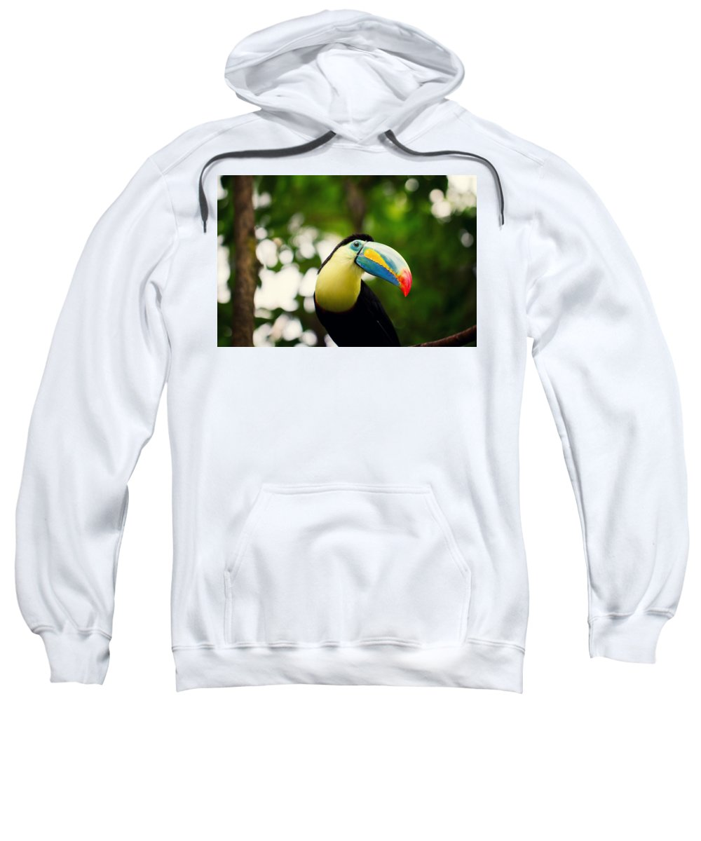 Toucan Sweatshirt featuring the digital art Toucan by Bert Mailer