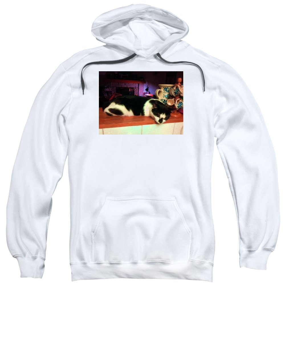 Cat Sweatshirt featuring the photograph Toulouse by Vicky Tarcau
