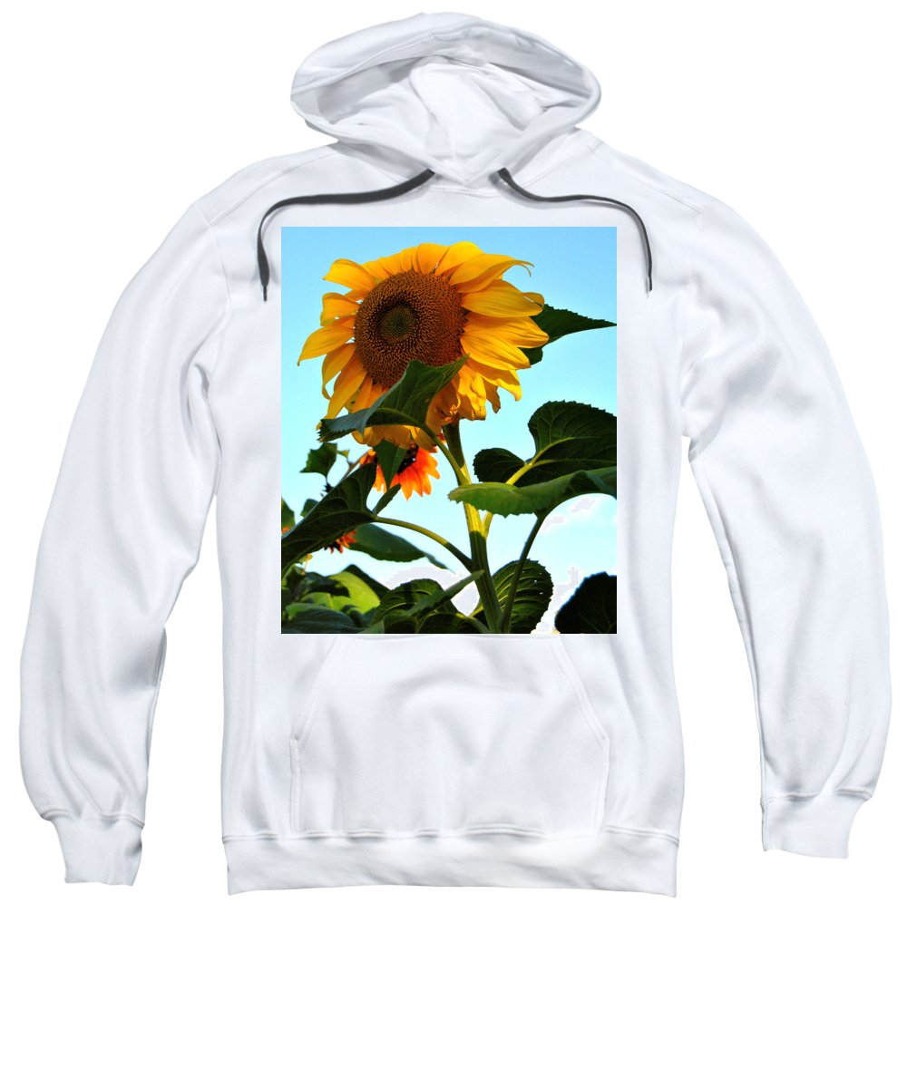 Sunflower Photography Sweatshirt featuring the photograph Towering Sunflower by Kathleen Sartoris