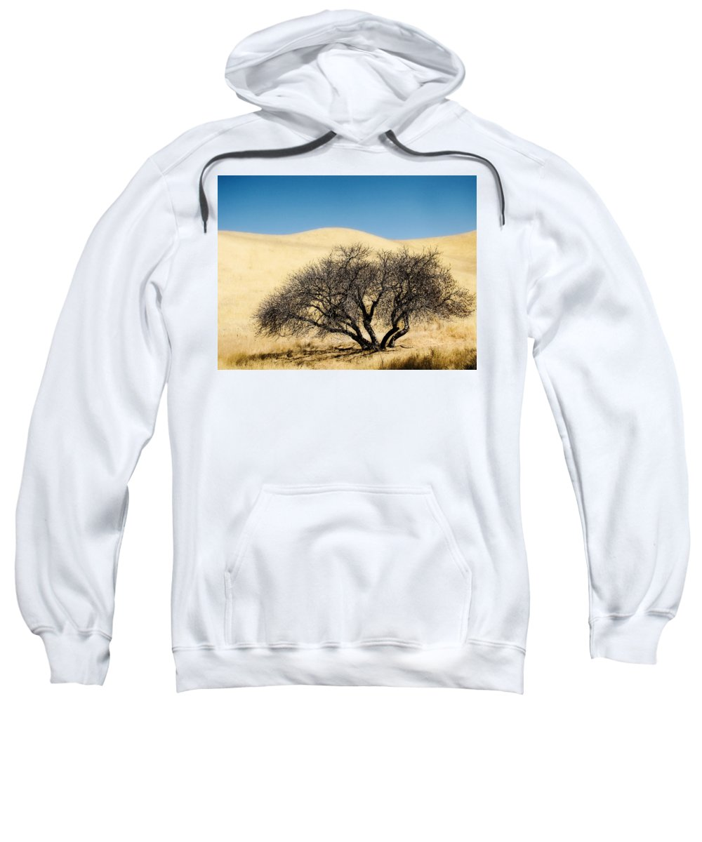 Trees Sweatshirt featuring the photograph Tree Formation 3 by Karen W Meyer
