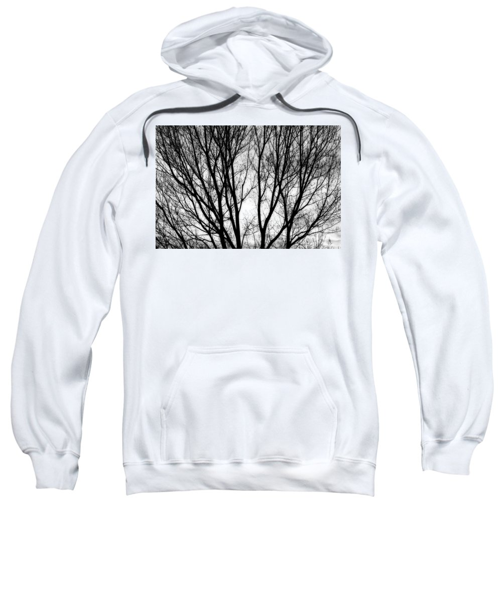 Silhouette Sweatshirt featuring the photograph Tree Silhouettes In Black And White by James BO Insogna