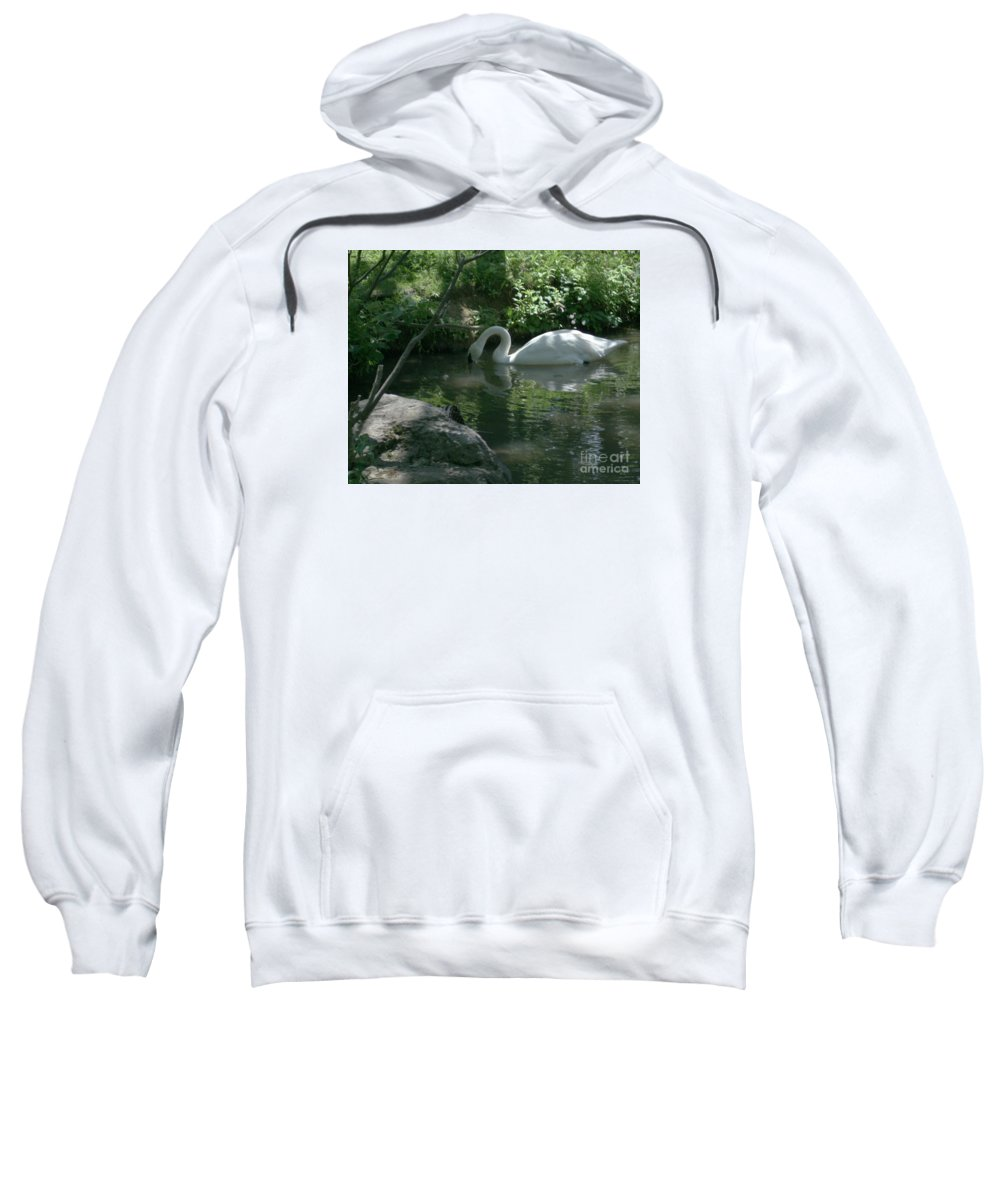 Trumpeter Swan Sweatshirt featuring the photograph Trumpeter Swan by Dawn Downour