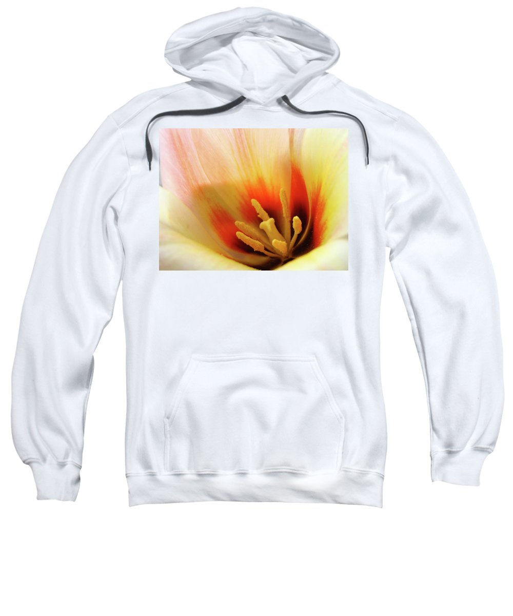 �tulips Artwork� Sweatshirt featuring the photograph Tulip Flower Artwork 31 Tulips Flowers Macro Spring Floral Art Prints by Baslee Troutman