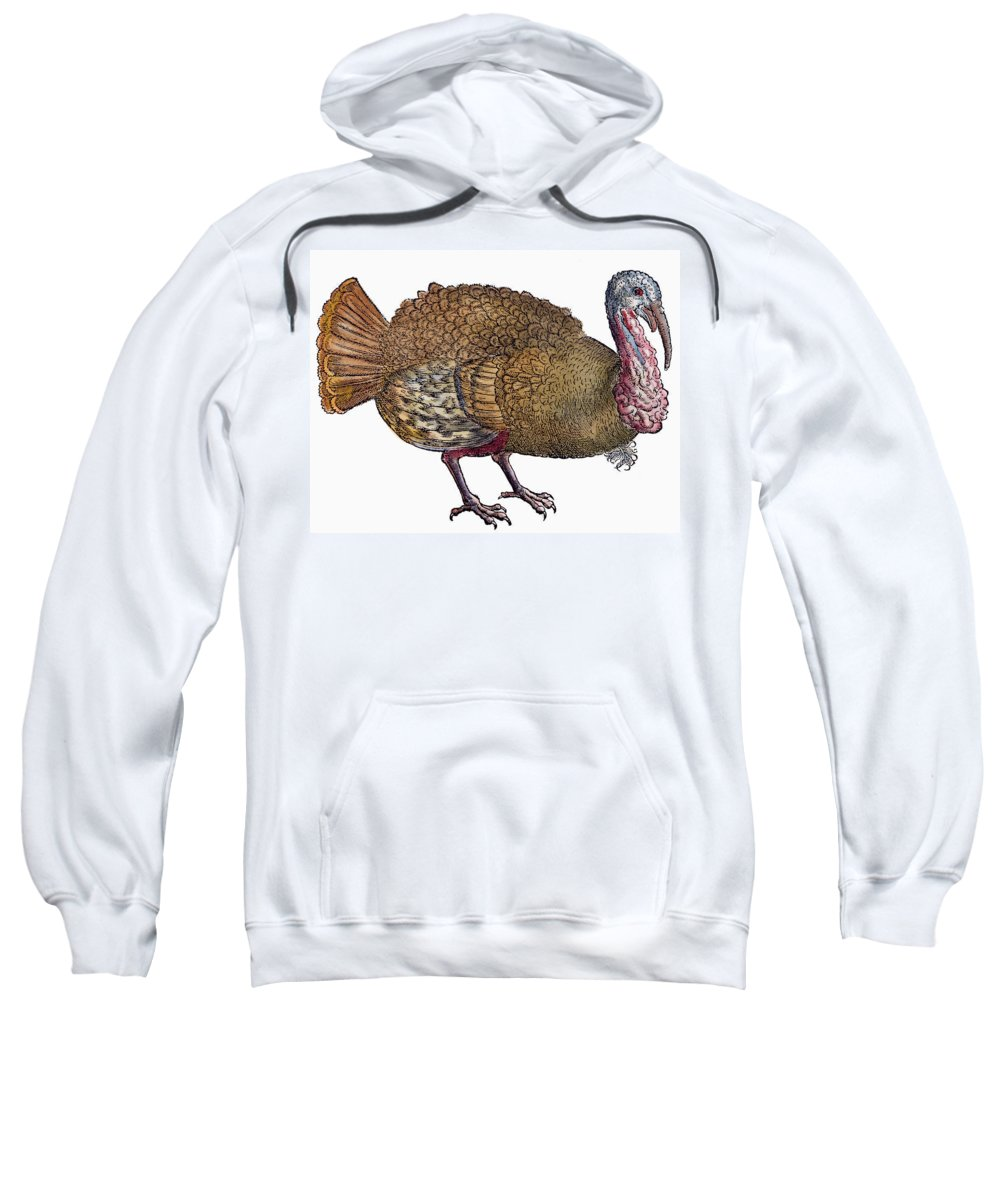 1560 Sweatshirt featuring the photograph Turkey, 1560 by Granger