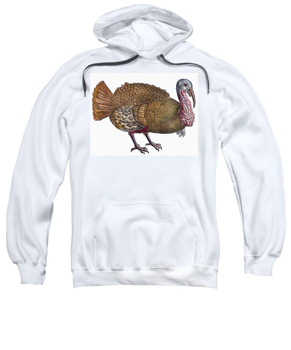 1560 Sweatshirt featuring the photograph Turkey, 1560 by Granger