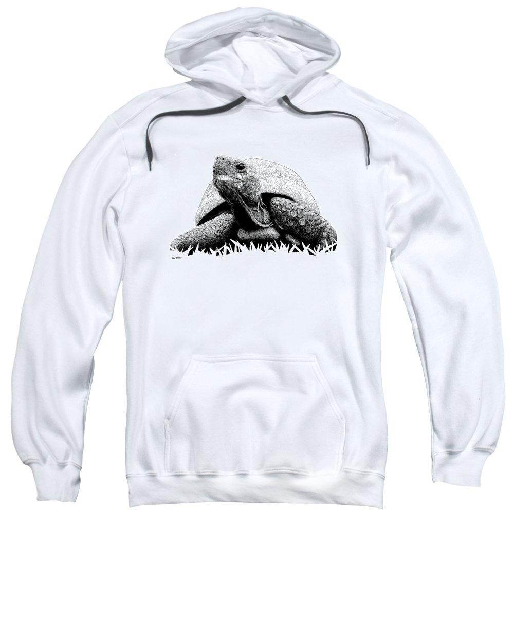 Pen Sweatshirt featuring the drawing Turtle by Scott Woyak