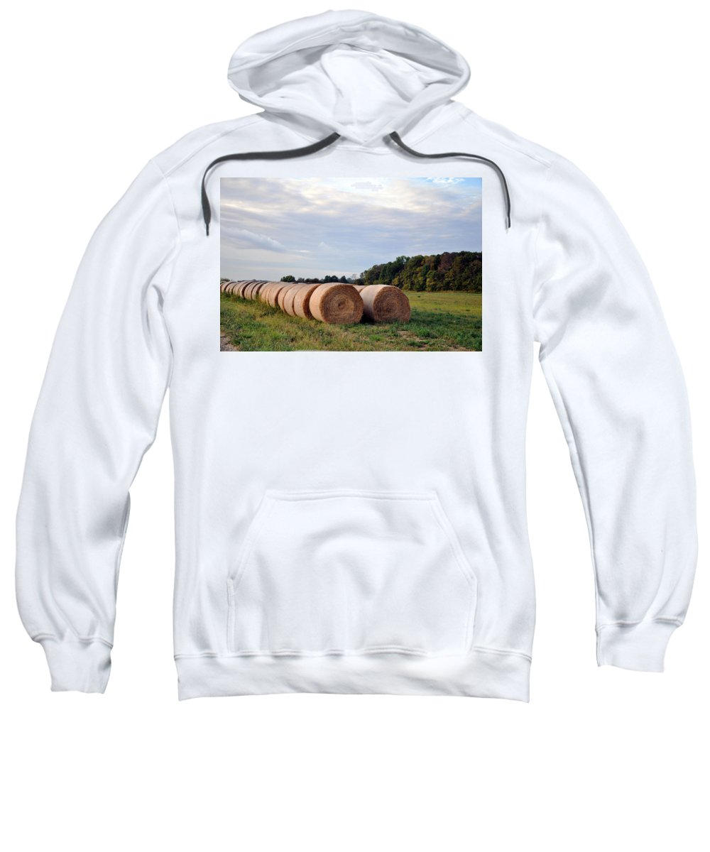 Straw Sweatshirt featuring the photograph Two By Two by Brittany Horton