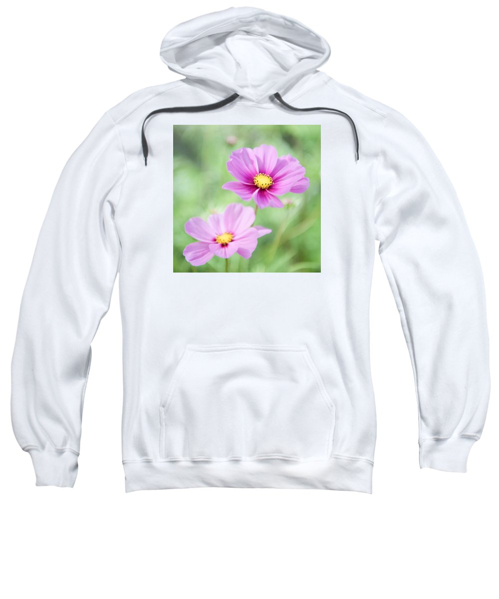 Two Sweatshirt featuring the photograph Two Purple Cosmos Flowers by Helen Northcott