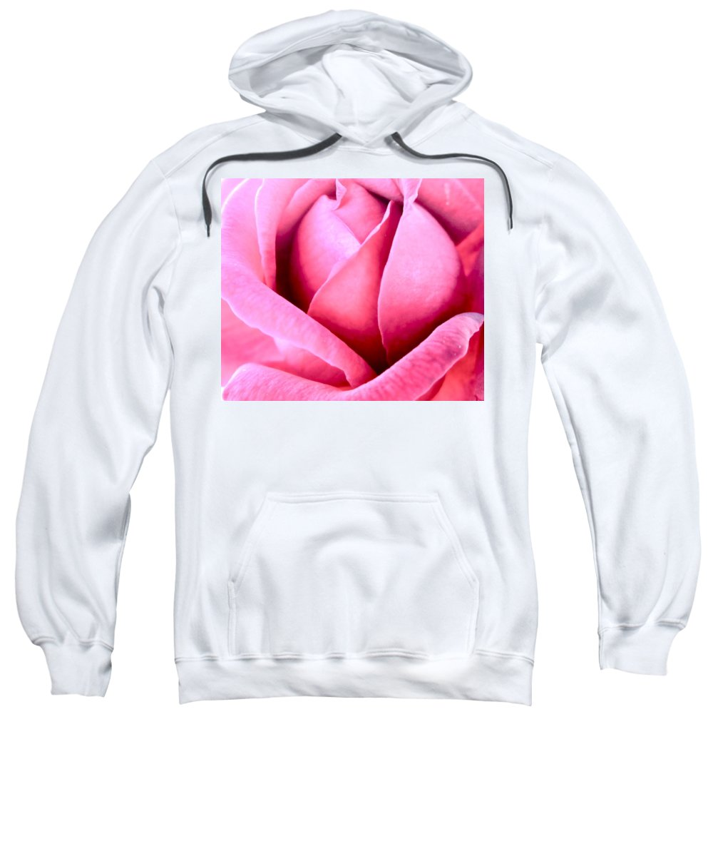 Photograph Of Pink Rose Sweatshirt featuring the photograph Vavavoom by Gwyn Newcombe