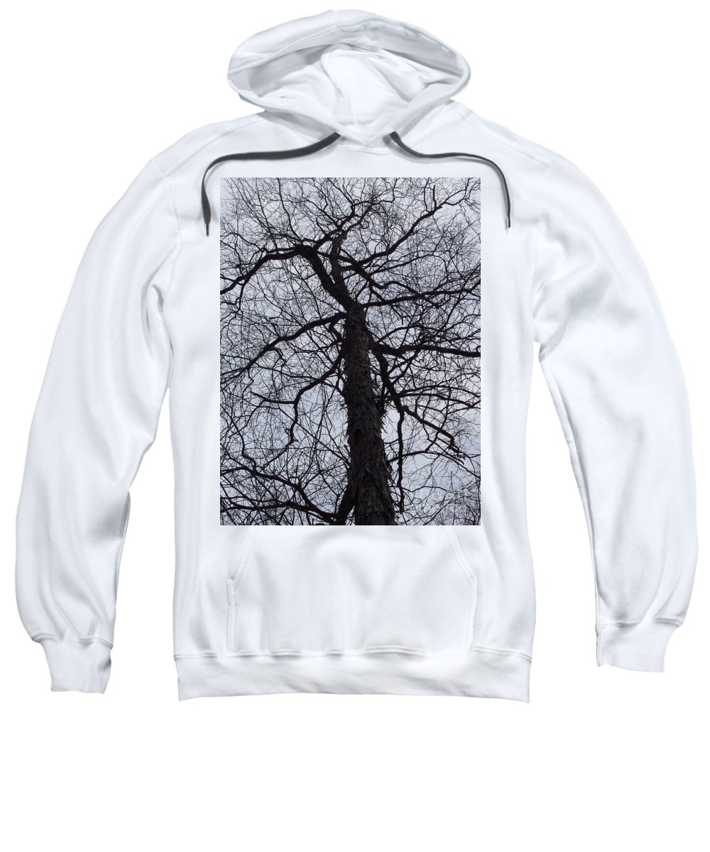 Hickory Sweatshirt featuring the photograph Veins And Vessels by Deborah Crew-Johnson