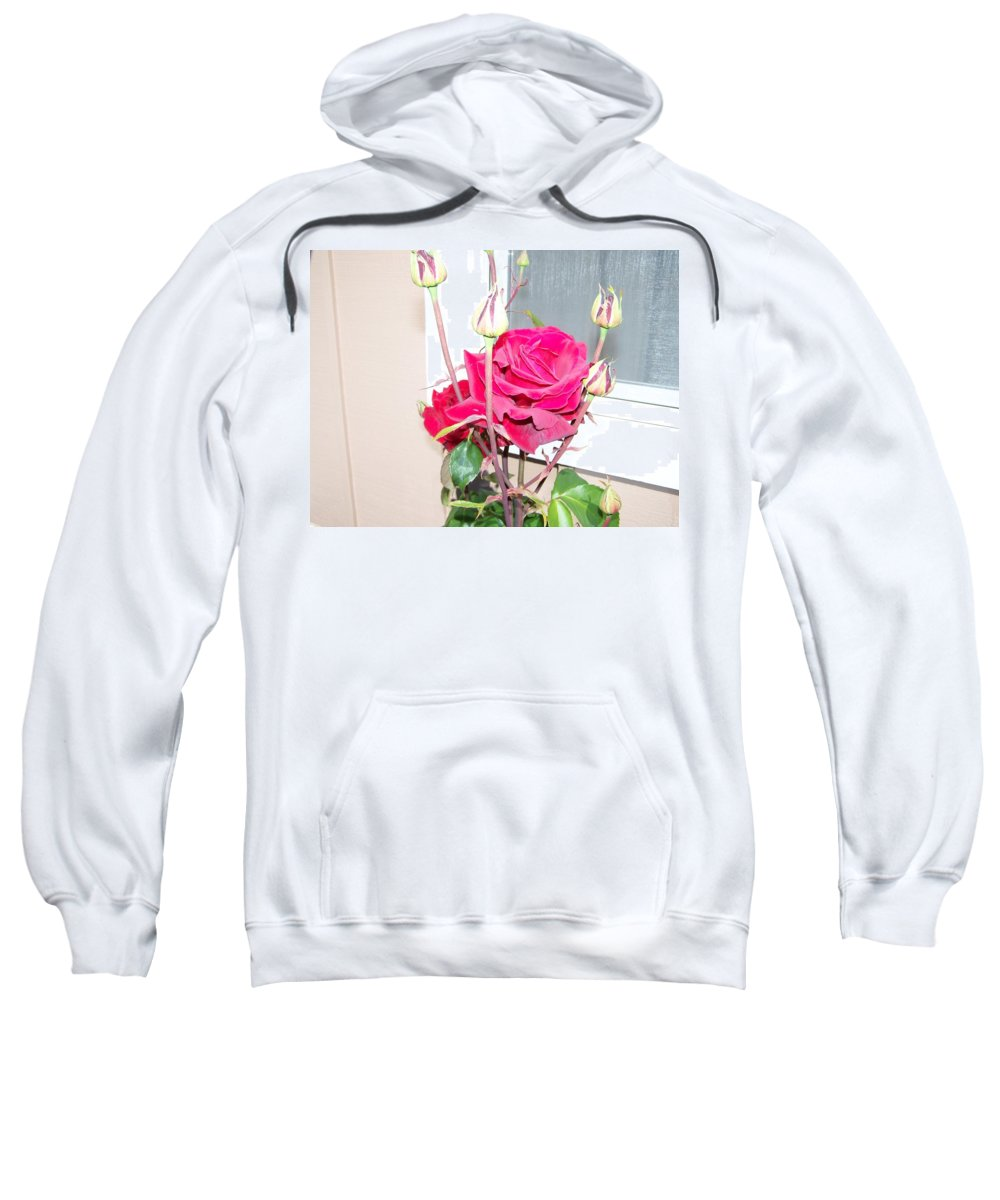 Digital Photography Artwork Sweatshirt featuring the photograph Velvet Red Rose Of Sharon by Laurie Kidd