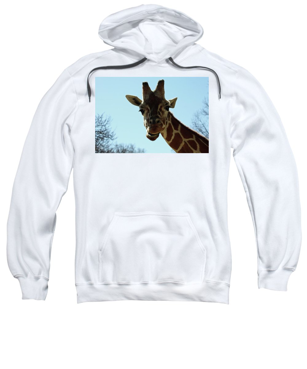 Maryland Sweatshirt featuring the photograph Very Tall Giraffe by Ronald Reid