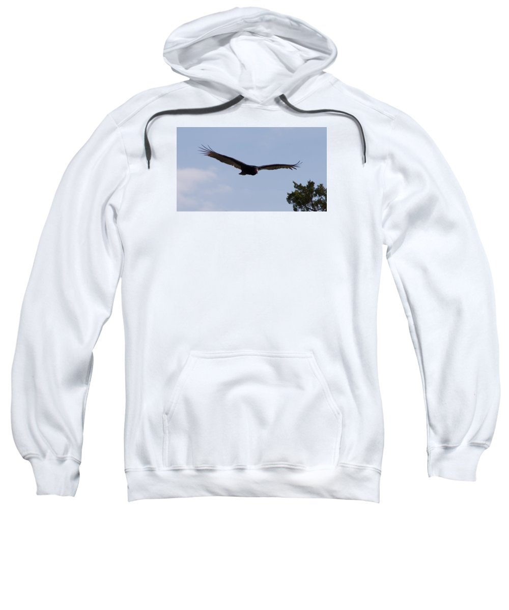 Vulture Sweatshirt featuring the photograph Vulture by Toni Berry