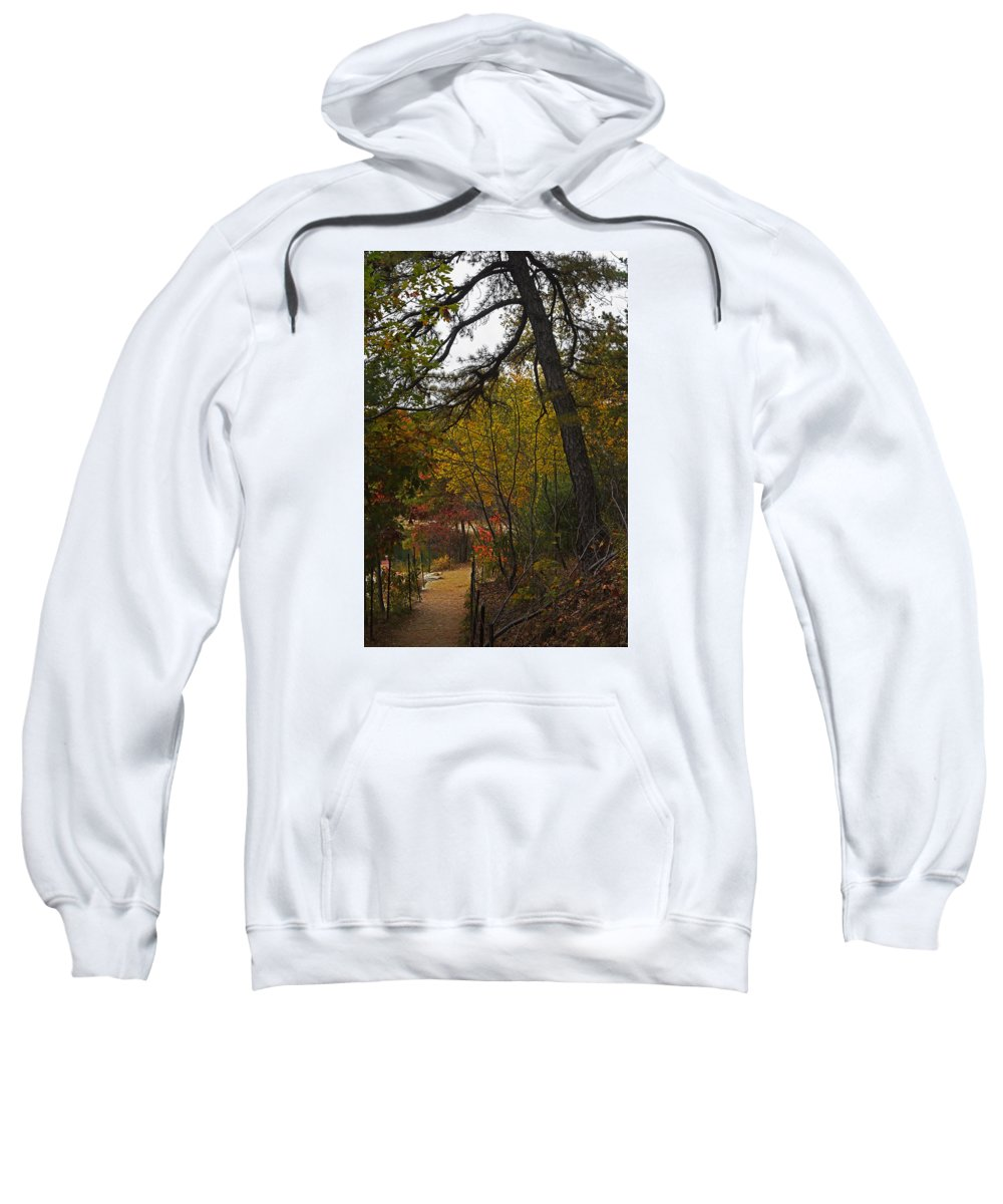 Walden Sweatshirt featuring the photograph Walden Pond Path Into The Forest 2 by Toby McGuire