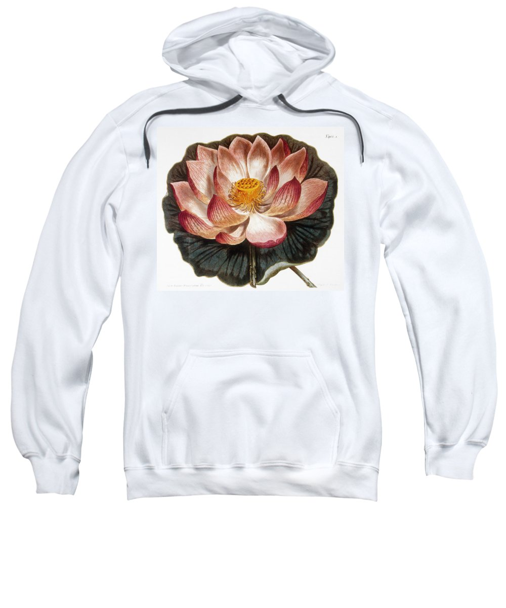 1806 Sweatshirt featuring the photograph Water Lily, 1806 by Granger
