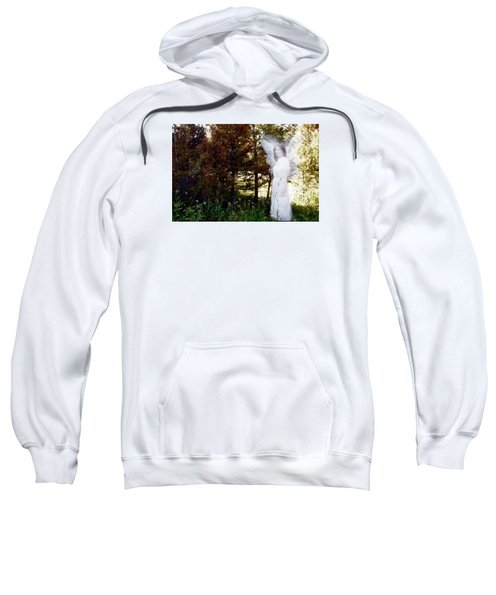 Sweatshirt featuring the photograph WG1 by Terry Wiklund