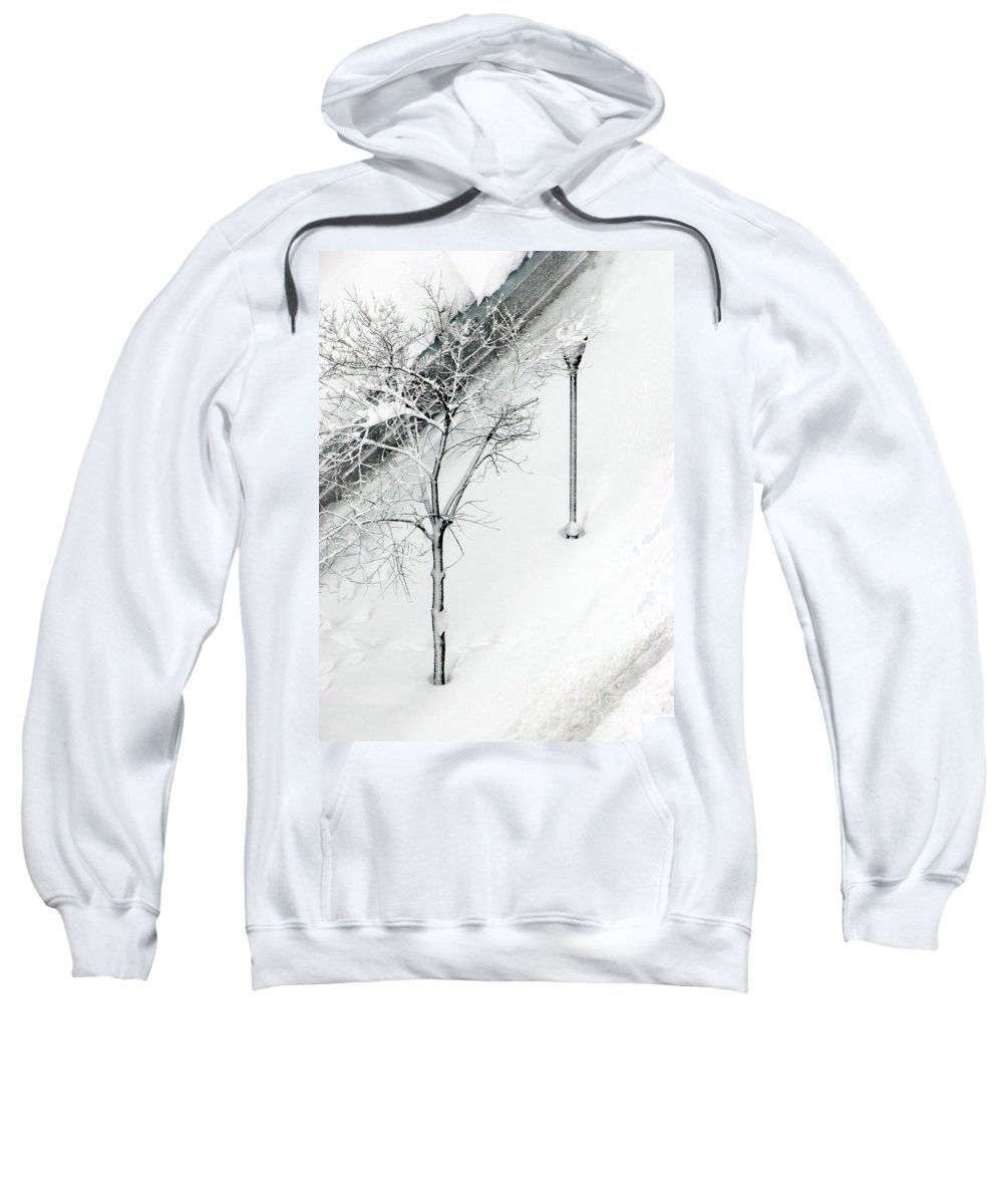 Black Sweatshirt featuring the photograph When Nature Quiets The City by Dana DiPasquale