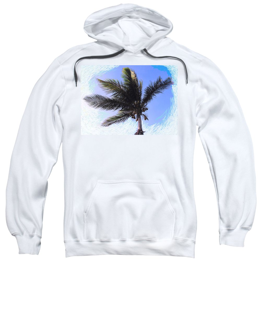 Palm Sweatshirt featuring the photograph Where Coconuts Come From by Ian MacDonald