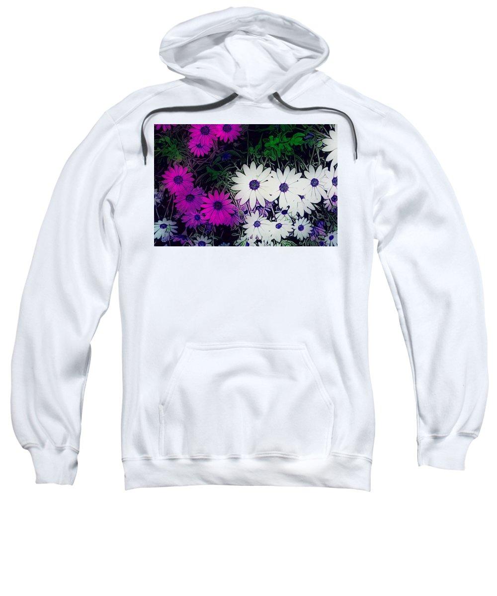 Osteospermum Sweatshirts