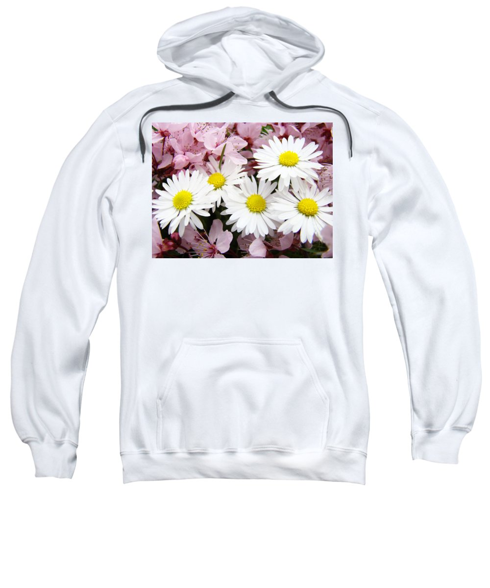 Blossom Sweatshirt featuring the photograph White Daisies Flowers Art Prints Spring Pink Blossoms Baslee by Baslee Troutman