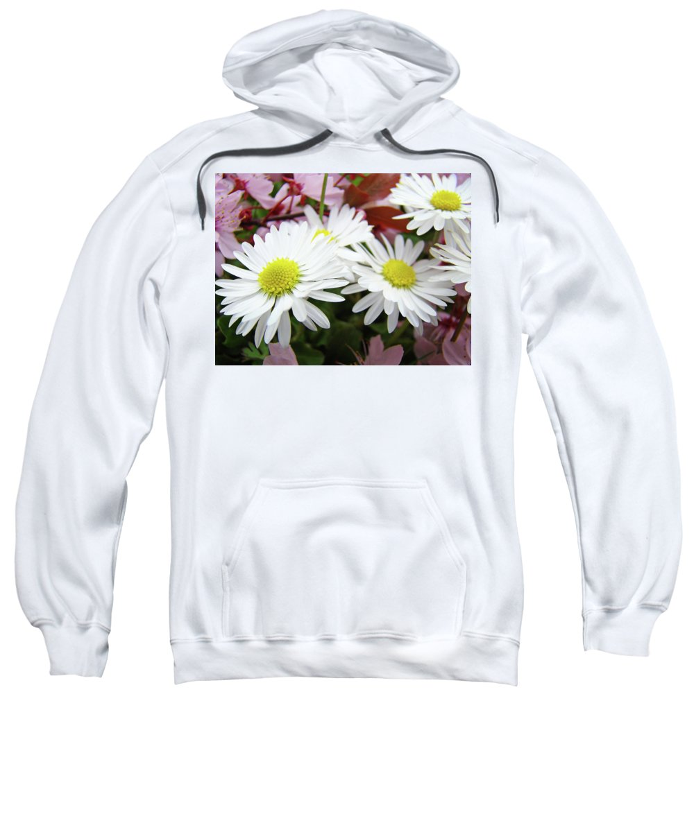 Nature Sweatshirt featuring the photograph White Daisy Floral Art Print Canvas Pink Blossom Baslee Troutman by Baslee Troutman