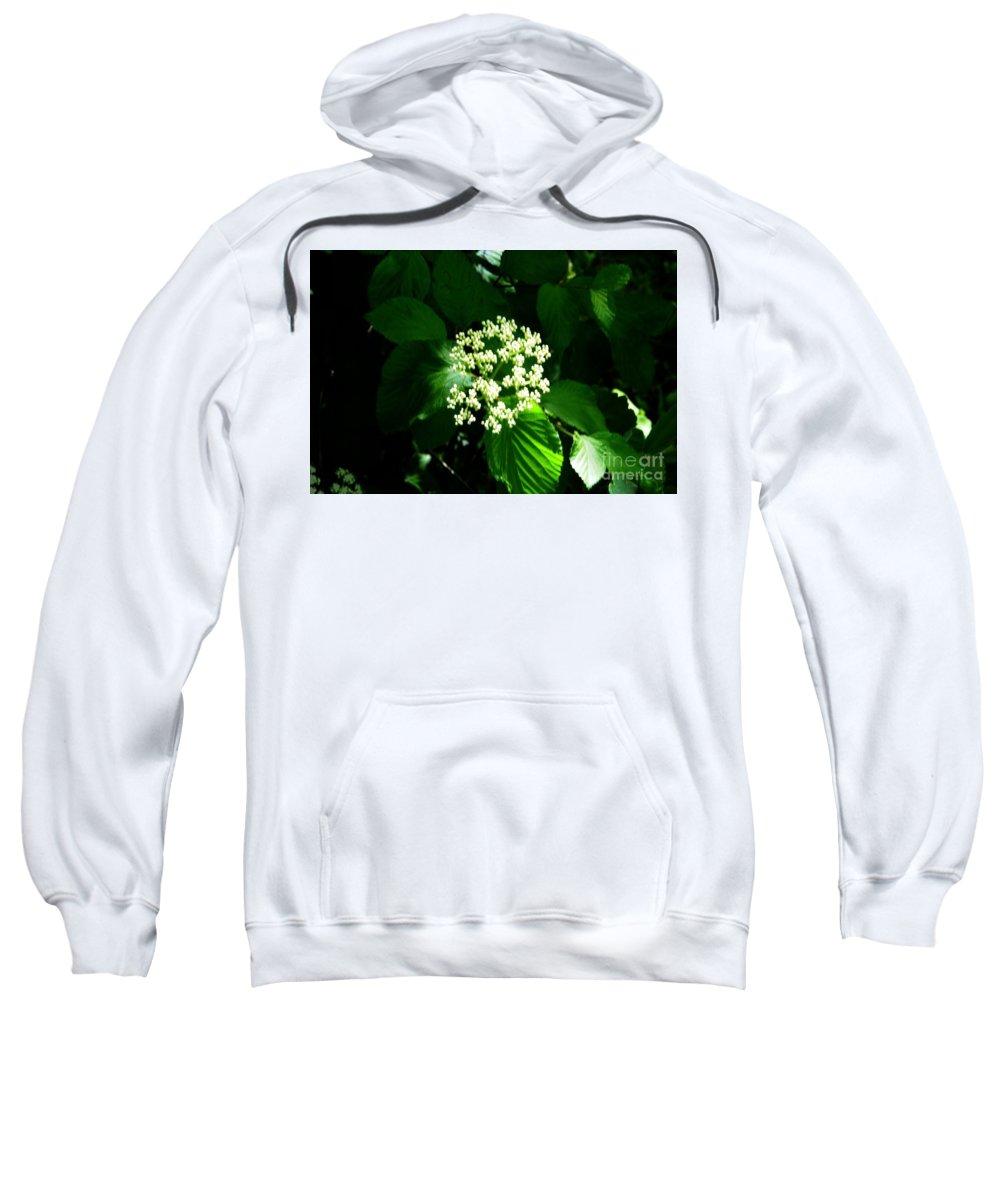 Flower Sweatshirt featuring the photograph White Flower by Kathleen Struckle