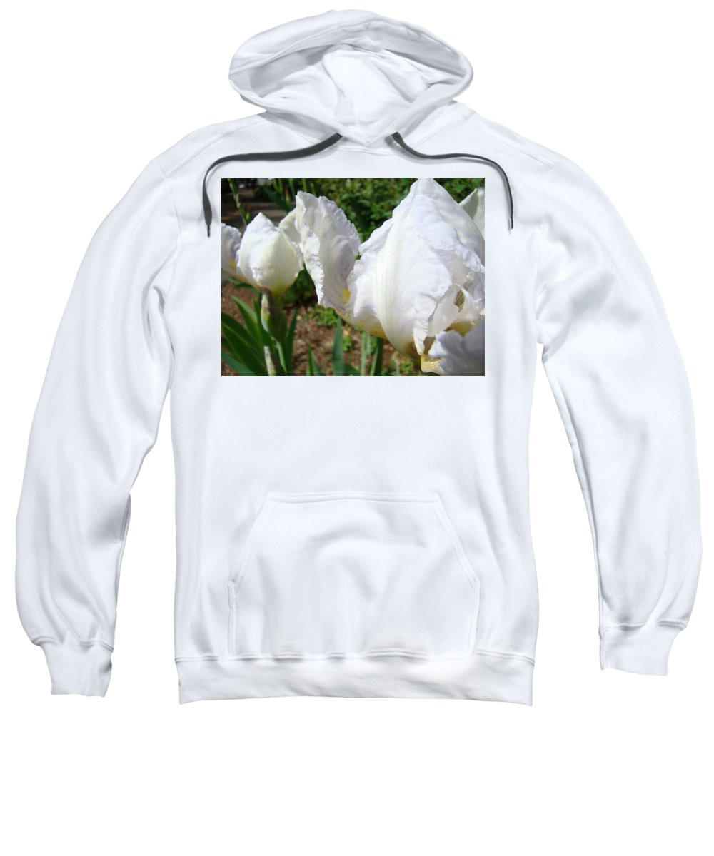 Iris Sweatshirt featuring the photograph White Iris Flowers Art Prints Irises Summer Floral Baslee Troutman by Baslee Troutman